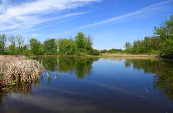 Michigan Park Ranger Requirements
