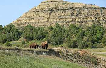 North Dakota Park Ranger Requirements