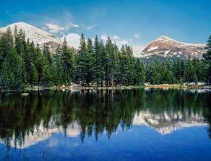 park-ranger-national-park-system