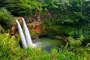 Hawaii Park Ranger